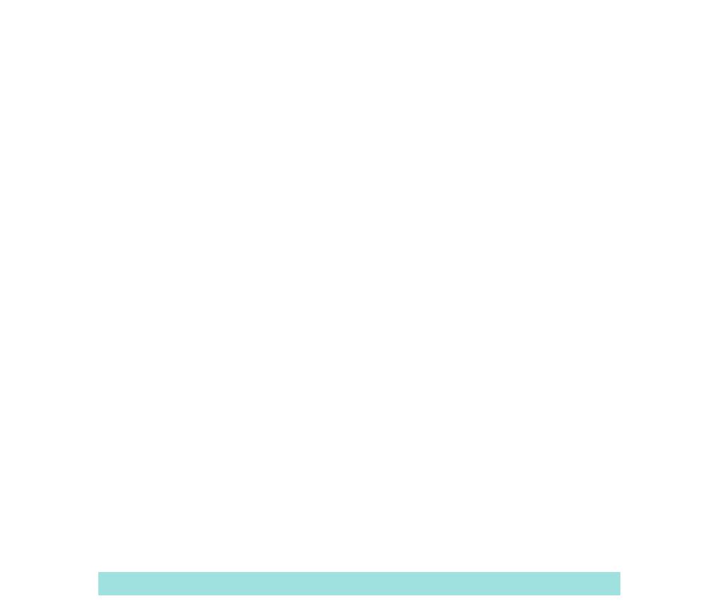 SEO For Insurance Companies