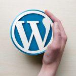 WordPress Development Company in Udaipur